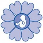 spring_logo_250